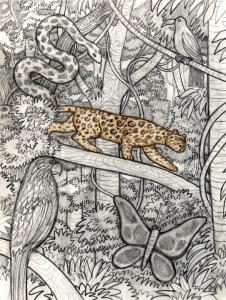 dibujo de Francisco Verástegui